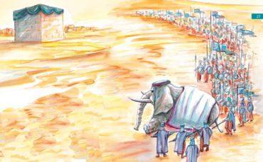 Mahmudi nuk ecën drejt Qabes (9)