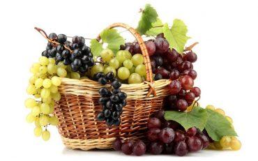 Zënka e rrushit